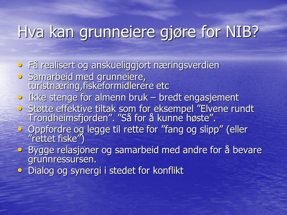 Hva kan grunneiere gjøre for NIB.