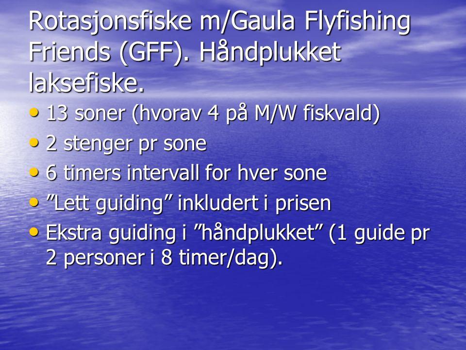 Rotasjonsfiske m/Gaula Flyfishing Friends (GFF). Håndplukket laksefiske.