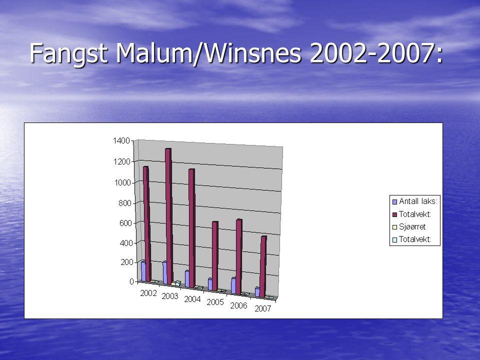 Fangst Malum/Winsnes 2002-2007:
