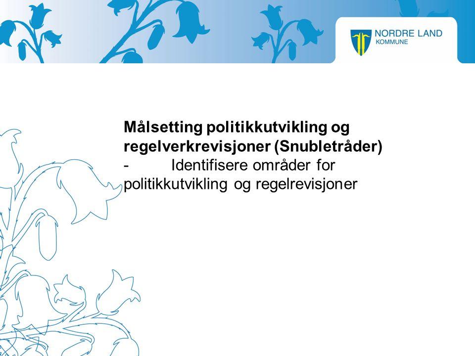 Målsetting politikkutvikling og regelverkrevisjoner (Snubletråder) -Identifisere områder for politikkutvikling og regelrevisjoner