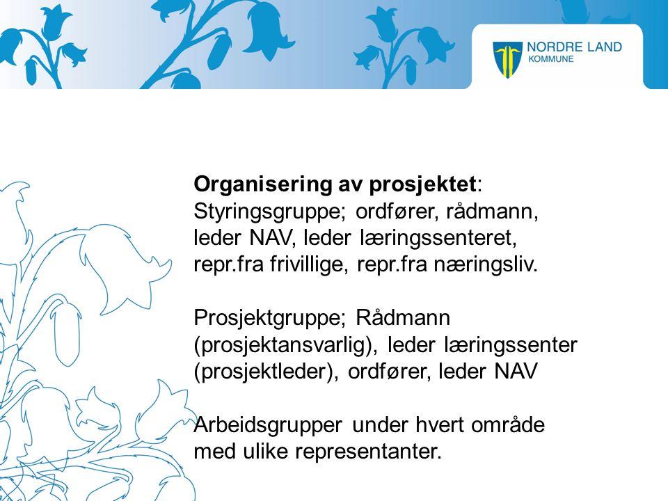 Organisering av prosjektet: Styringsgruppe; ordfører, rådmann, leder NAV, leder læringssenteret, repr.fra frivillige, repr.fra næringsliv.