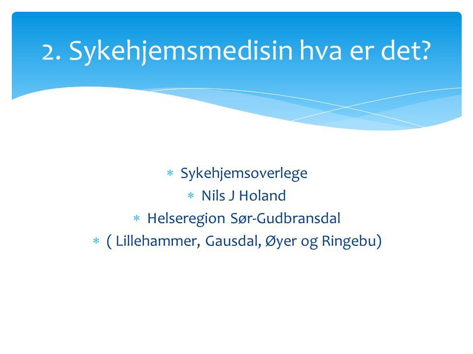 Sykehjemsoverlege  Nils J Holand  Helseregion Sør-Gudbransdal  ( Lillehammer, Gausdal, Øyer og Ringebu) 2.