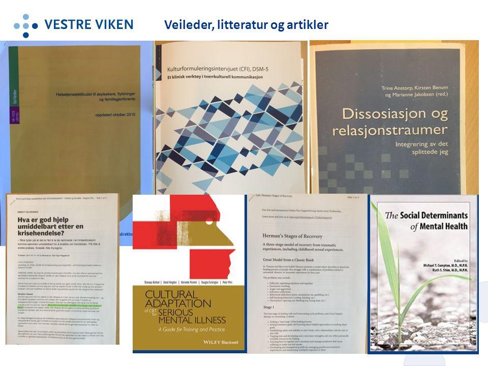 Veileder, litteratur og artikler