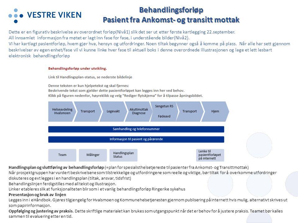 Utfordringer og spesielle hensyn Mål- gruppe Tiltak/Prioritet (etablerte og forslag) StatusAnsvarFrist Smittevern.