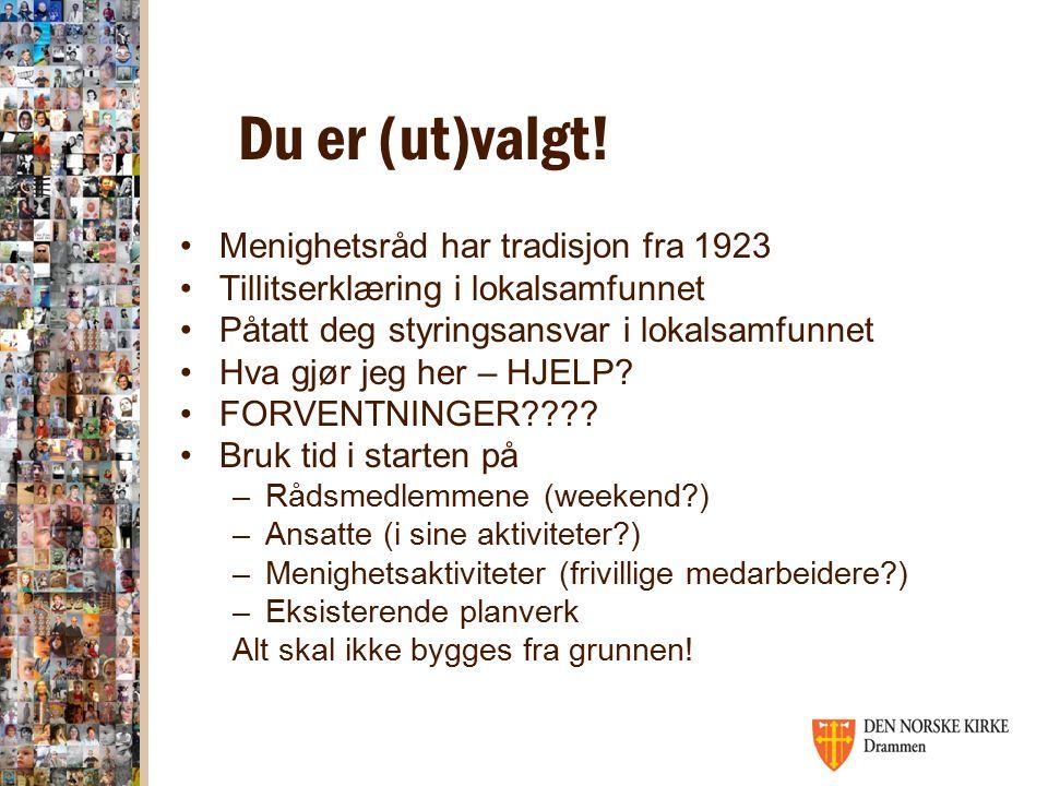 Organisering av Dnk i Drammen 8 menigheter, 10 kirker, 9 kirkegårder, 5 kapell 63 tusen innbyggere, 43 tusen kirkemedlemmer.