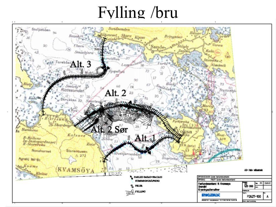 Fylkeskommunen Ferja og ferjeleie Med i finansieringsplanen Innbyggjartilskot for geografi Dette utgjer ei halv stilling som vert innspara.