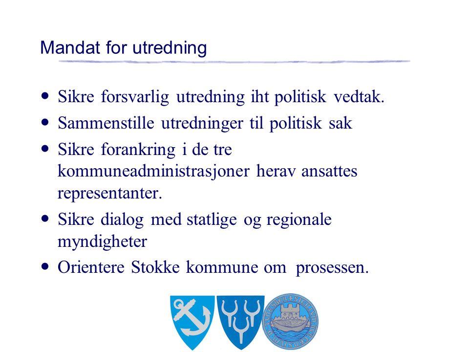Mandat for utredning Sikre forsvarlig utredning iht politisk vedtak.