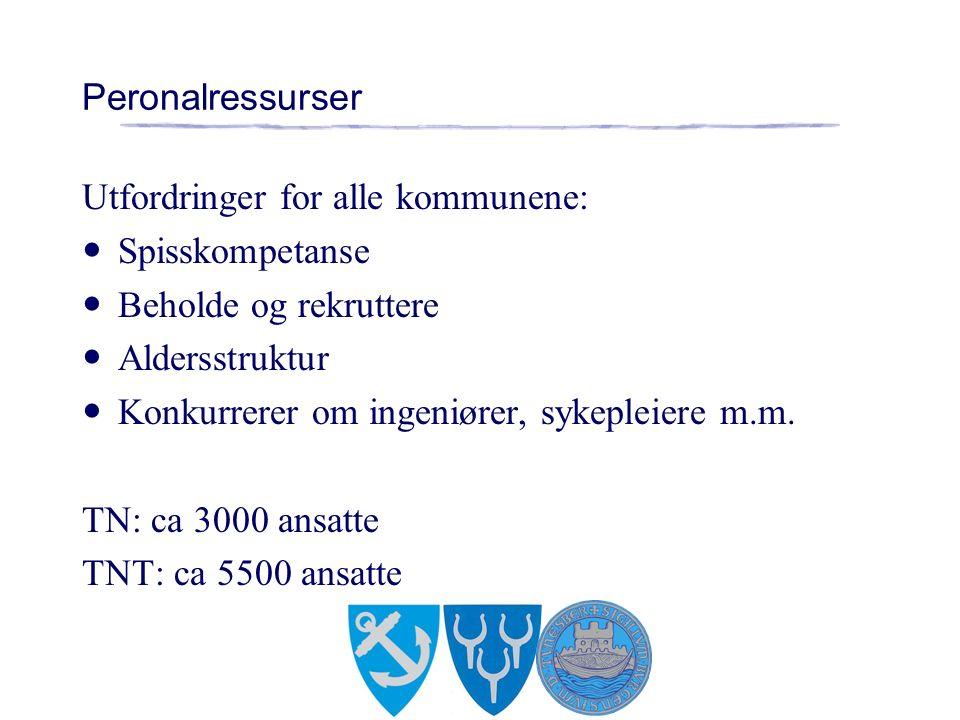 Peronalressurser Utfordringer for alle kommunene: Spisskompetanse Beholde og rekruttere Aldersstruktur Konkurrerer om ingeniører, sykepleiere m.m.