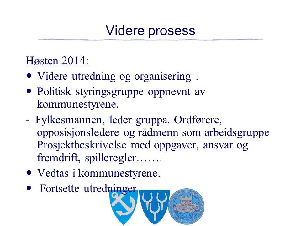 Videre prosess Høsten 2014: Videre utredning og organisering.