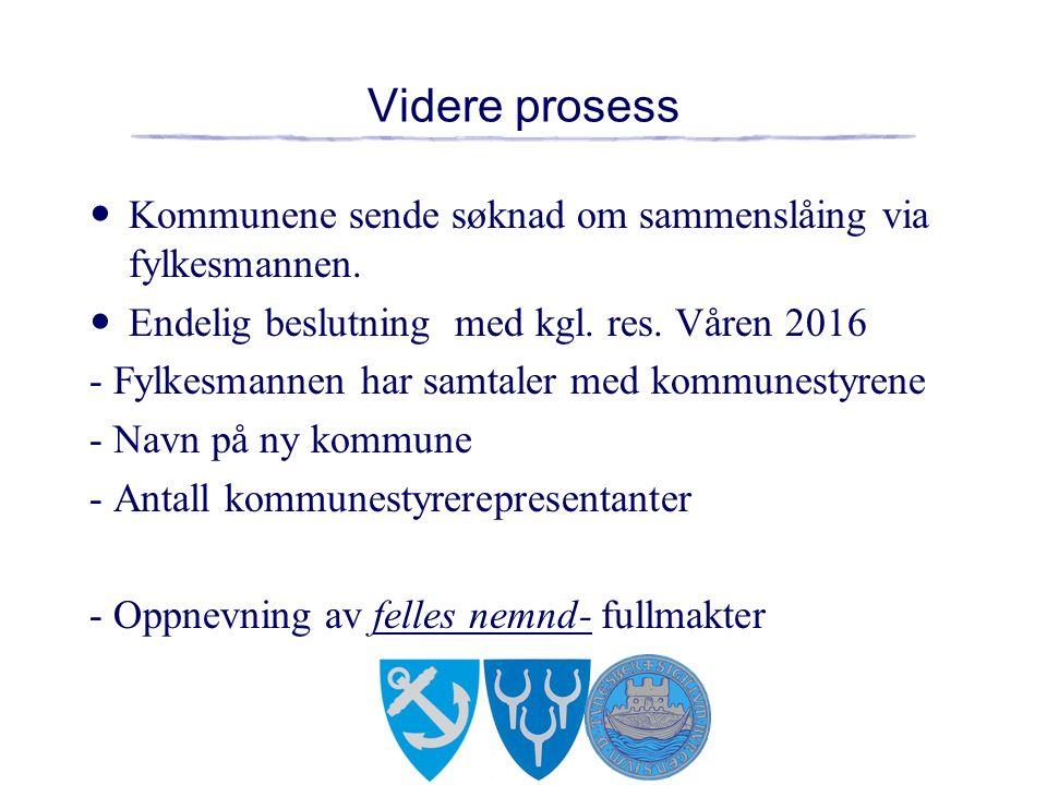 Videre prosess Kommunene sende søknad om sammenslåing via fylkesmannen.