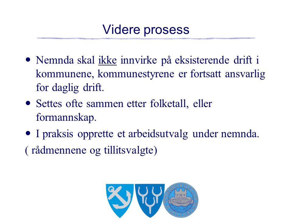 Videre prosess Nemnda skal ikke innvirke på eksisterende drift i kommunene, kommunestyrene er fortsatt ansvarlig for daglig drift.