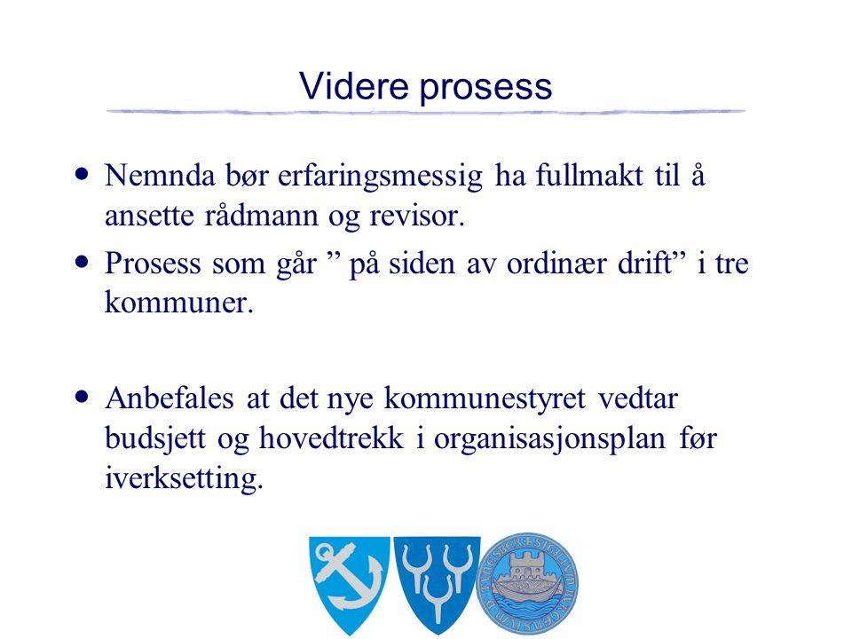 Videre prosess Nemnda bør erfaringsmessig ha fullmakt til å ansette rådmann og revisor.