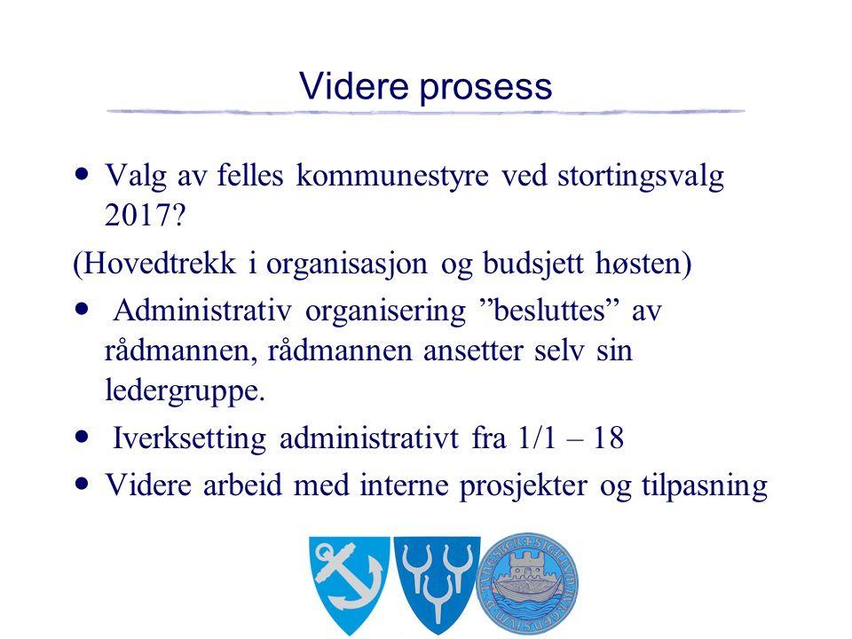 Videre prosess Valg av felles kommunestyre ved stortingsvalg 2017.
