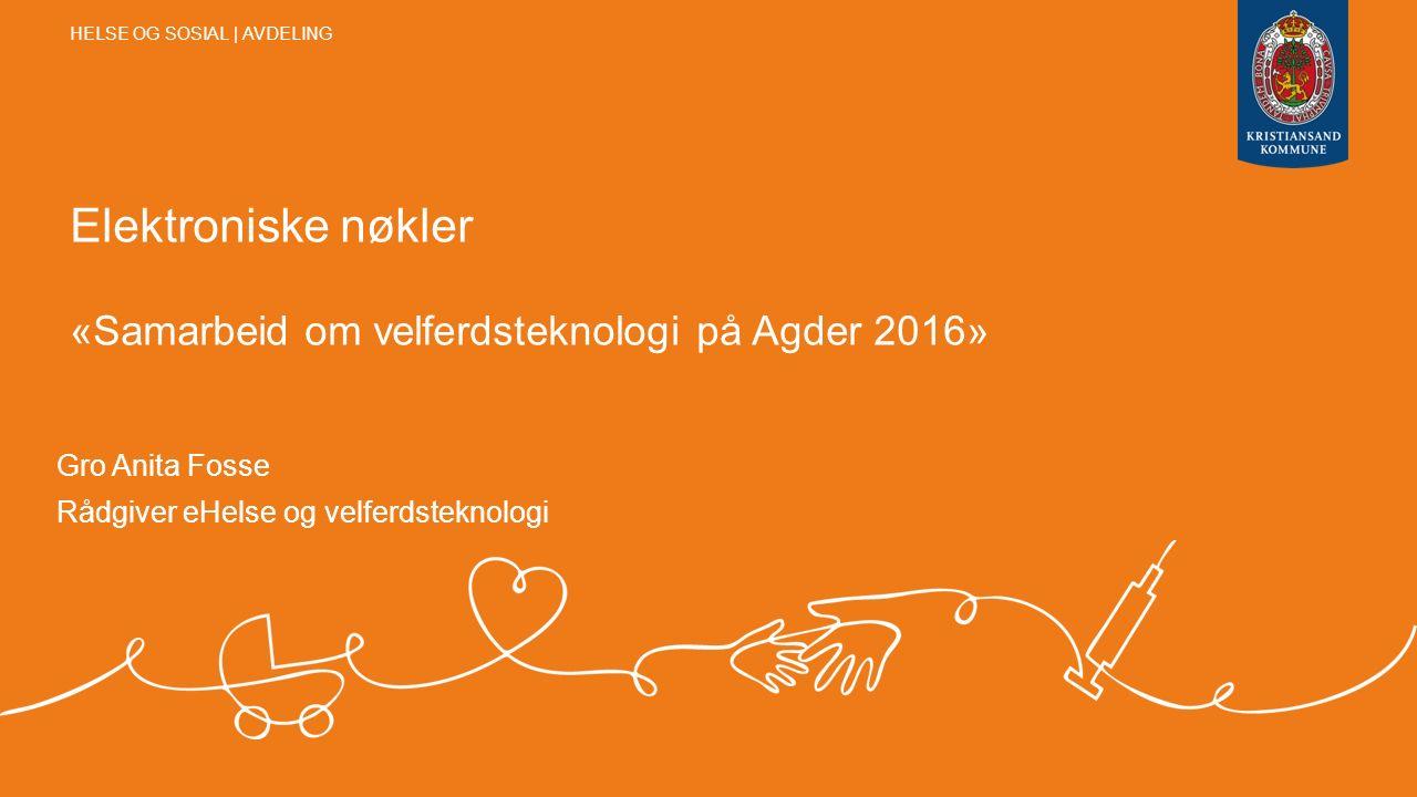 Elektroniske nøkler «Samarbeid om velferdsteknologi på Agder 2016» Gro Anita Fosse Rådgiver eHelse og velferdsteknologi HELSE OG SOSIAL | AVDELING