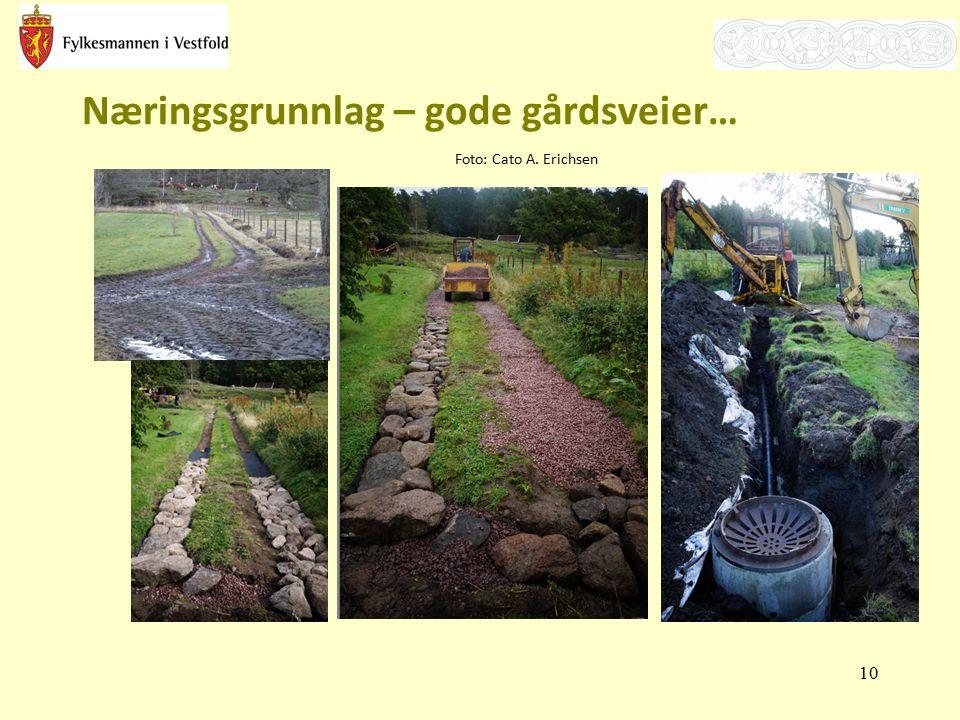 Næringsgrunnlag – gode gårdsveier… Foto: Cato A. Erichsen 10