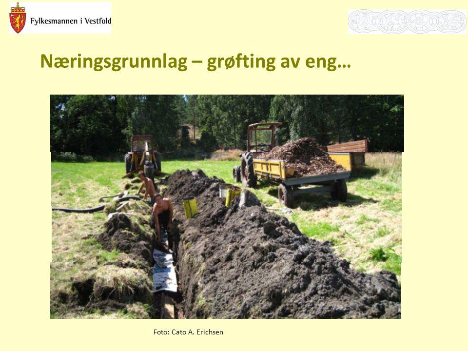 Næringsgrunnlag – grøfting av eng… Foto: Cato A. Erichsen