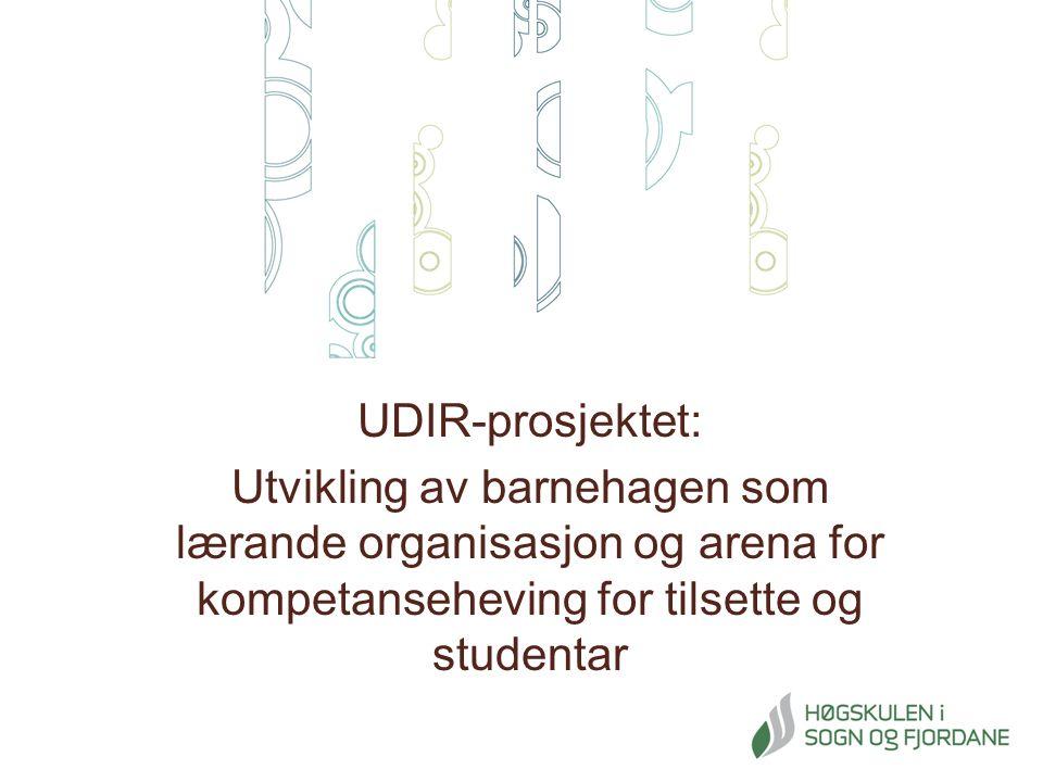 UDIR-prosjektet: Utvikling av barnehagen som lærande organisasjon og arena for kompetanseheving for tilsette og studentar