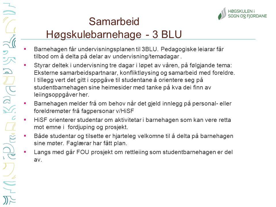 Samarbeid Høgskulebarnehage - 3 BLU  Barnehagen får undervisningsplanen til 3BLU.