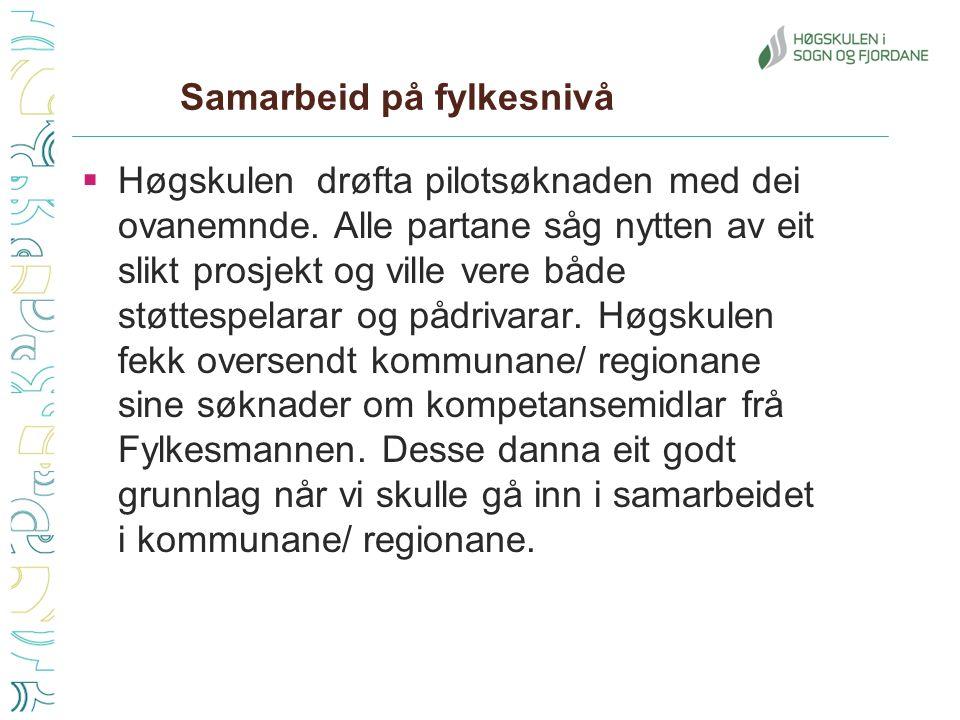 Samarbeid på fylkesnivå  Høgskulen drøfta pilotsøknaden med dei ovanemnde.