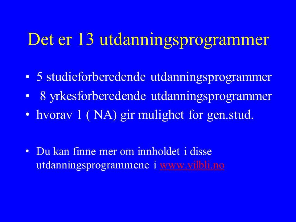 Det er 13 utdanningsprogrammer 5 studieforberedende utdanningsprogrammer 8 yrkesforberedende utdanningsprogrammer hvorav 1 ( NA) gir mulighet for gen.stud.