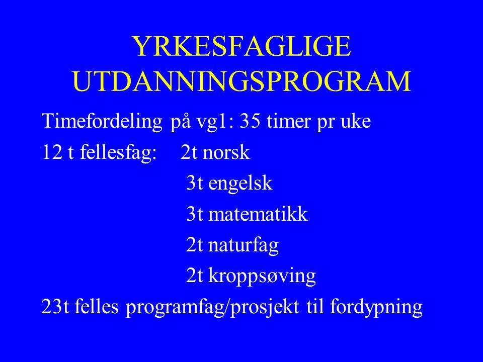 Eksempel på oppbygning av et utdanningsprogram: Helse- og oppvekst Vg1Vg2Vg3 Ambulansefaget 2 år læretid Barne- og ungdoms- arbeider Barne- og ungdoms- arbeider 2 år læretid Helse- og oppvekstfag HelsearbeiderfagHelsearbeiderfaget 2 år læretid HudpleieHudpleier 1 år skole