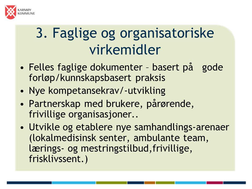 3. Faglige og organisatoriske virkemidler Felles faglige dokumenter – basert på gode forløp/kunnskapsbasert praksis Nye kompetansekrav/-utvikling Part
