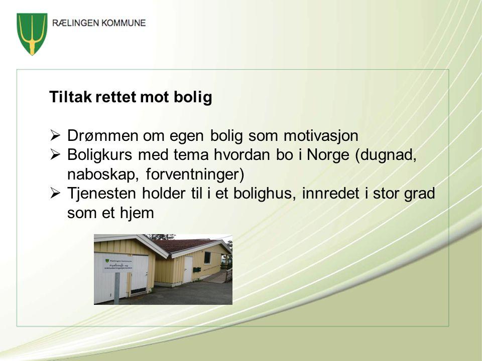 Tiltak rettet mot bolig  Drømmen om egen bolig som motivasjon  Boligkurs med tema hvordan bo i Norge (dugnad, naboskap, forventninger)  Tjenesten holder til i et bolighus, innredet i stor grad som et hjem