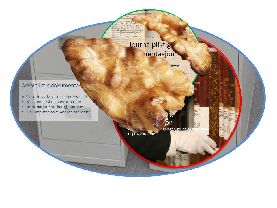 Arkivpliktig dokumentasjon Arkiv som skal bevares i begrenset tid Virksomhetskritisk informasjon Informasjon som kan gjenbrukes Dokumentasjon av andres interesser Journalpliktig dokumentasjon Presist formulert i arkivforskriften Bevaringspliktig dokumentasjon Eks: Bilder, kart og tegninger, grunnlagsmateriale til prosjekter mv.
