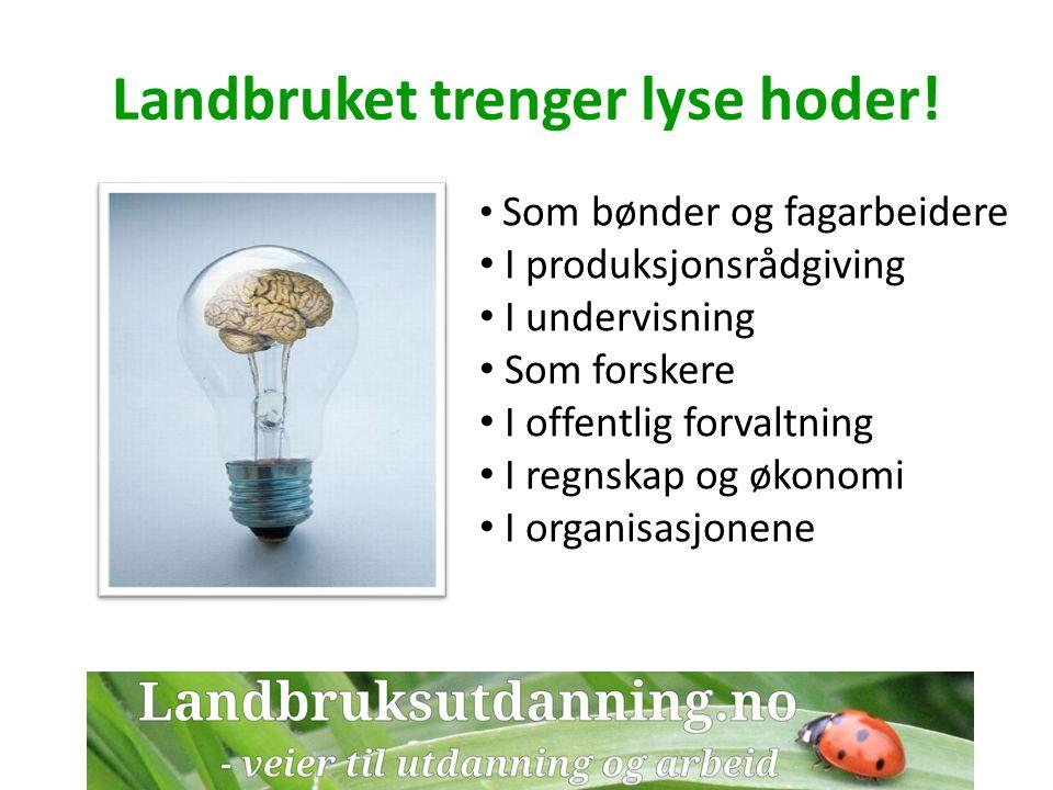 Landbruket i samfunnet Hver tiende bedrift i Norge er en landbruksbedrift Landbruks- og matindustrien sysselsetter 90.000 Den største verdikjeden i fastlands-Norge I tillegg til å produsere mat leverer landbruket: – miljøvennlig energi – landskapspleie – helse- sosial- og utdanningstjenester – aktiviteter og opplevelser – overnatting og servering