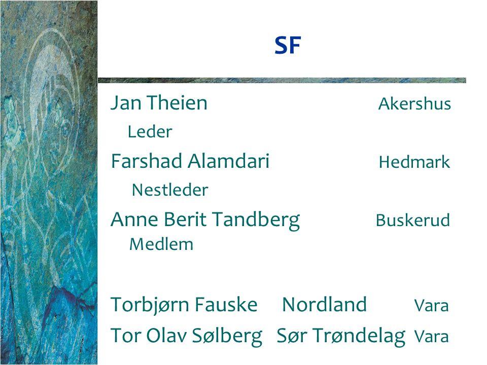 SF Jan Theien Akershus Leder Farshad Alamdari Hedmark Nestleder Anne Berit Tandberg Buskerud Medlem Torbjørn Fauske Nordland Vara Tor Olav Sølberg Sør Trøndelag Vara
