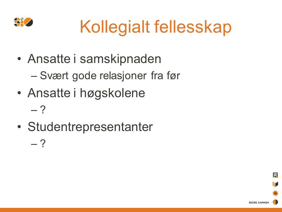 Kollegialt fellesskap Ansatte i samskipnaden –Svært gode relasjoner fra før Ansatte i høgskolene –.