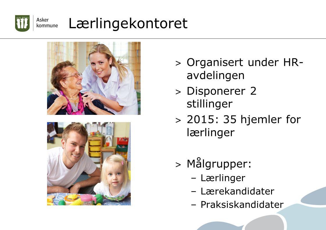 Lærlingekontoret > Organisert under HR- avdelingen > Disponerer 2 stillinger > 2015: 35 hjemler for lærlinger > Målgrupper: –Lærlinger –Lærekandidater