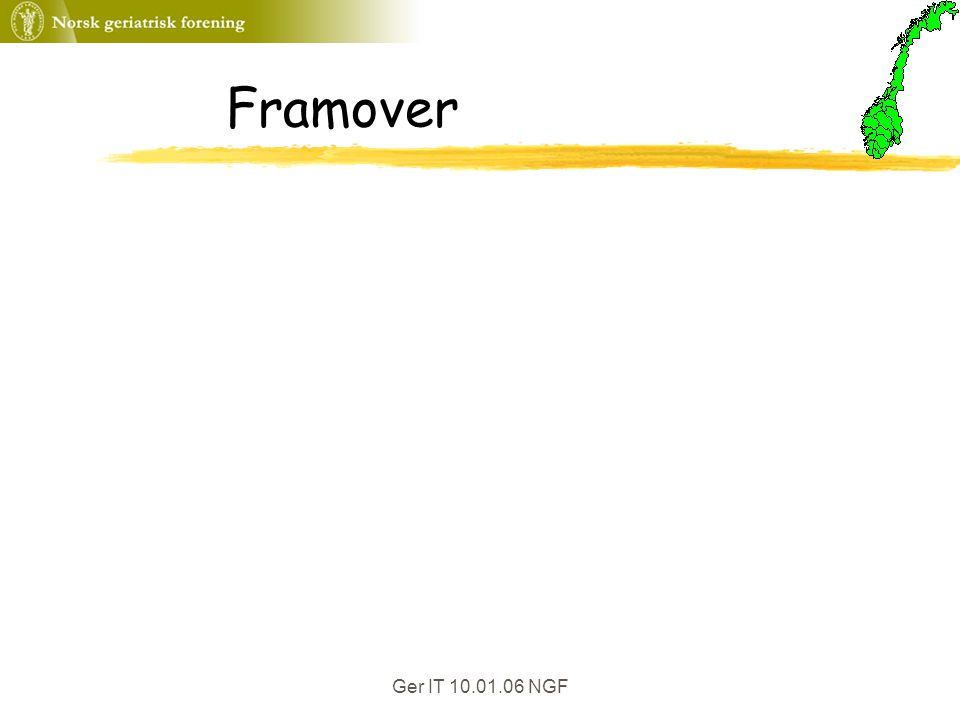 Ger IT 10.01.06 NGF Framover