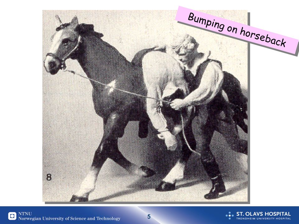 5 Bumping on horseback