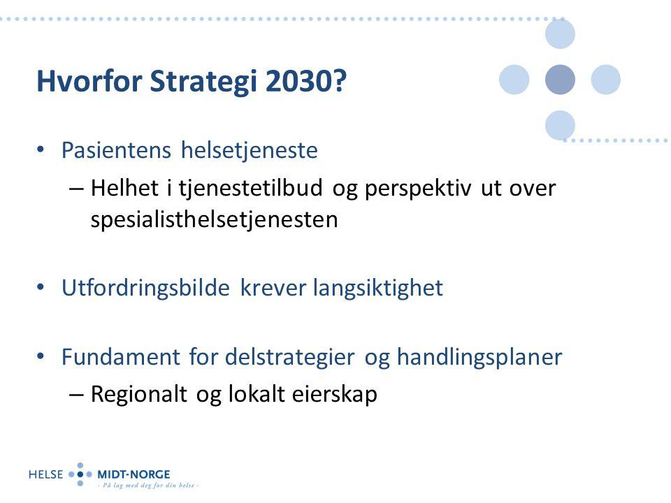 Hvorfor Strategi 2030.