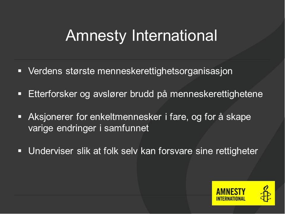  Verdens største menneskerettighetsorganisasjon  Etterforsker og avslører brudd på menneskerettighetene  Aksjonerer for enkeltmennesker i fare, og for å skape varige endringer i samfunnet  Underviser slik at folk selv kan forsvare sine rettigheter Amnesty International