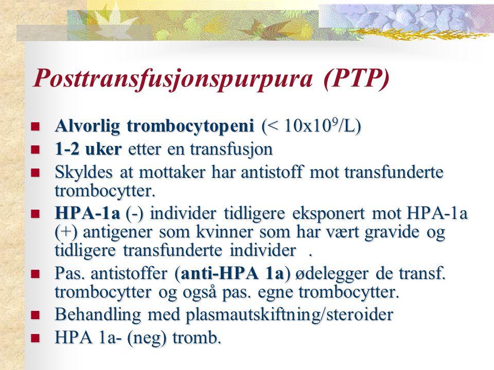 Posttransfusjonspurpura (PTP) Alvorlig trombocytopeni (< 10x10 9 /L) Alvorlig trombocytopeni (< 10x10 9 /L) 1-2 uker etter en transfusjon 1-2 uker etter en transfusjon Skyldes at mottaker har antistoff mot transfunderte trombocytter.