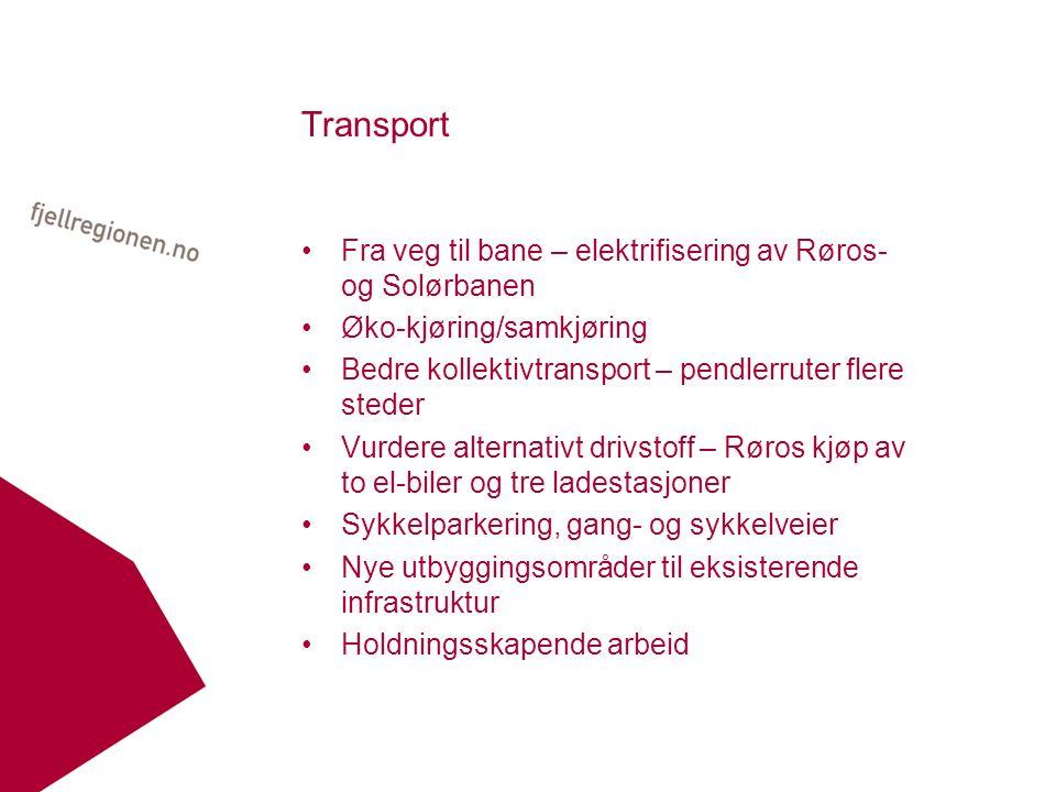 Transport Fra veg til bane – elektrifisering av Røros- og Solørbanen Øko-kjøring/samkjøring Bedre kollektivtransport – pendlerruter flere steder Vurdere alternativt drivstoff – Røros kjøp av to el-biler og tre ladestasjoner Sykkelparkering, gang- og sykkelveier Nye utbyggingsområder til eksisterende infrastruktur Holdningsskapende arbeid
