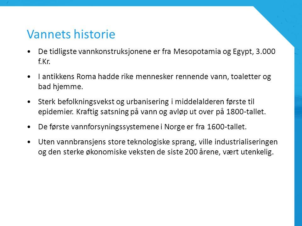 Vannets historie De tidligste vannkonstruksjonene er fra Mesopotamia og Egypt, 3.000 f.Kr. I antikkens Roma hadde rike mennesker rennende vann, toalet