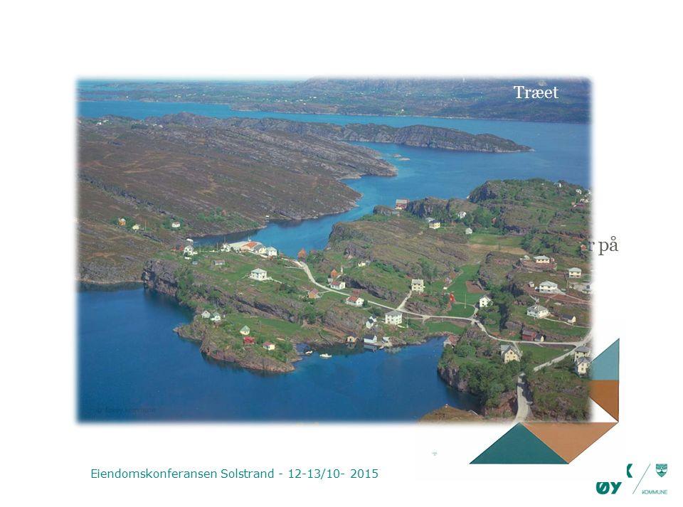 Hvordan vi har gjort det Kostnader og inntekter Hvor stor del av arbeidstiden går med til de ulike oppgaver på seksjonen Endring av tjenesteområder Forventede inntekter Eiendomskonferansen Solstrand - 12-13/10- 2015 Træet