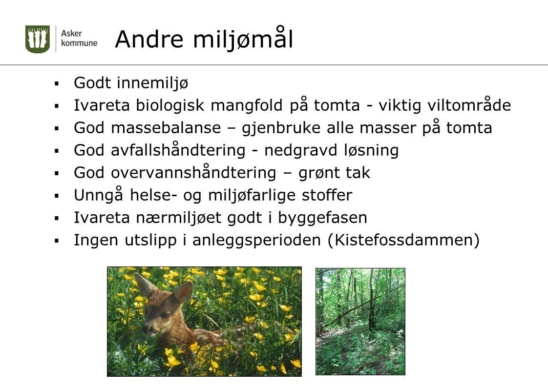 Andre miljømål  Godt innemiljø  Ivareta biologisk mangfold på tomta - viktig viltområde  God massebalanse – gjenbruke alle masser på tomta  God av