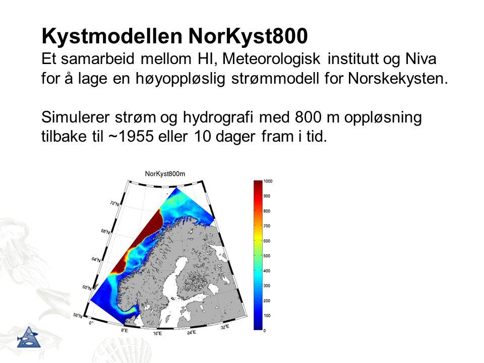 Kystmodellen NorKyst800 Et samarbeid mellom HI, Meteorologisk institutt og Niva for å lage en høyoppløslig strømmodell for Norskekysten.