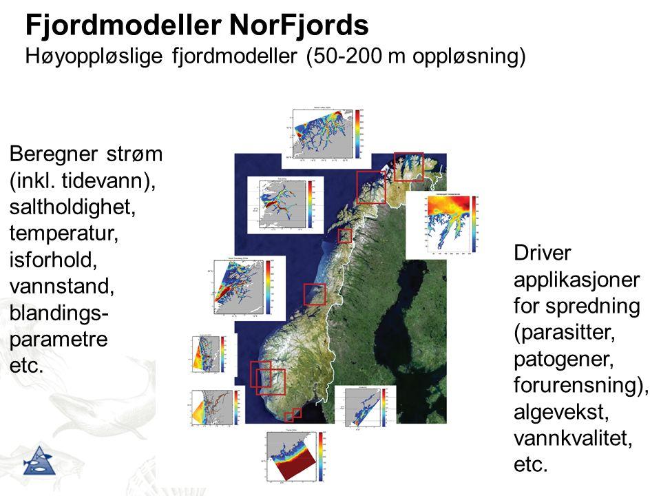 Fjordmodeller NorFjords Høyoppløslige fjordmodeller (50-200 m oppløsning) Beregner strøm (inkl.