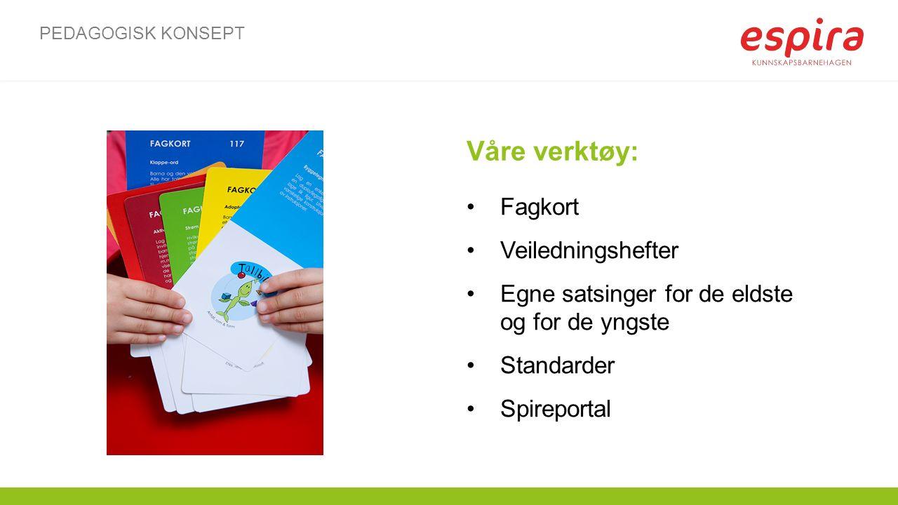 Våre verktøy: Fagkort Veiledningshefter Egne satsinger for de eldste og for de yngste Standarder Spireportal PEDAGOGISK KONSEPT