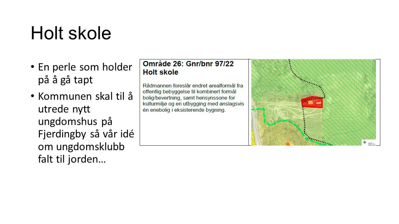 Holt skole En perle som holder på å gå tapt Kommunen skal til å utrede nytt ungdomshus på Fjerdingby så vår idé om ungdomsklubb falt til jorden…