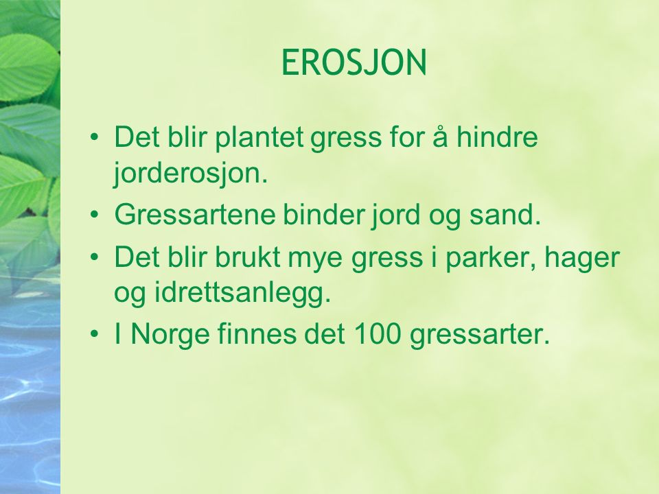 EROSJON Det blir plantet gress for å hindre jorderosjon.