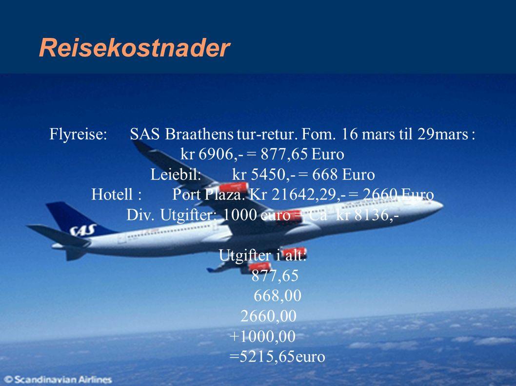 Reisekostnader Flyreise: SAS Braathens tur-retur. Fom. 16 mars til 29mars : kr 6906,- = 877,65 Euro Leiebil: kr 5450,- = 668 Euro Hotell : Port Plaza.