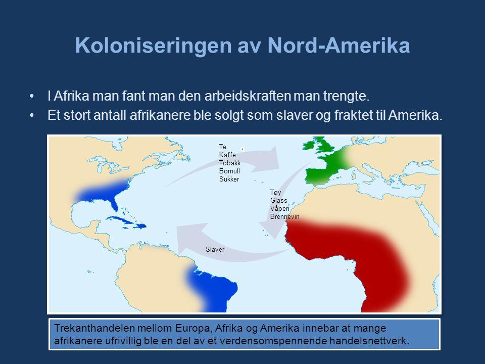 Koloniseringen av Nord-Amerika I Afrika man fant man den arbeidskraften man trengte.