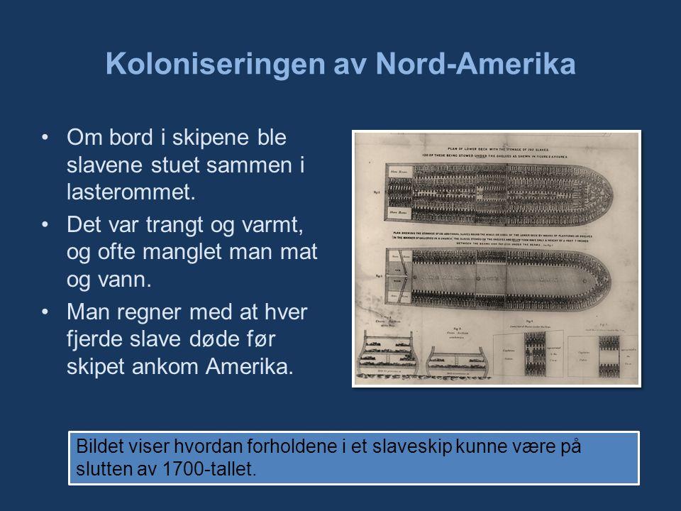 Koloniseringen av Nord-Amerika Om bord i skipene ble slavene stuet sammen i lasterommet.