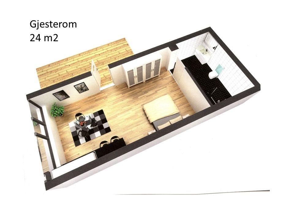 Gjesterom 24 m2